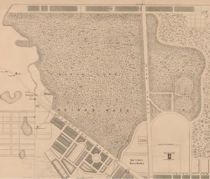 Detail of the 1855 Kearney plan of Melbourne and suburbs, showing Royal Park